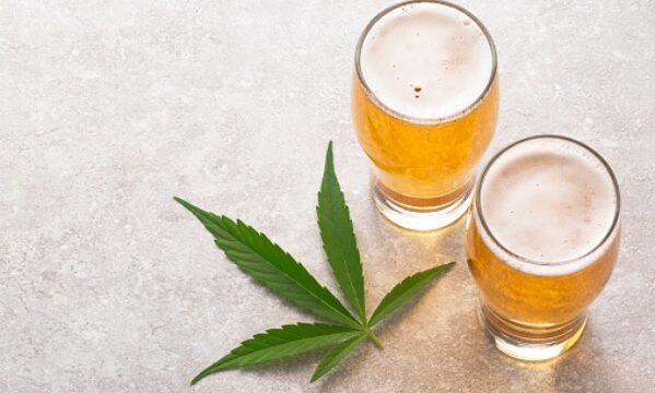 CBD ビール